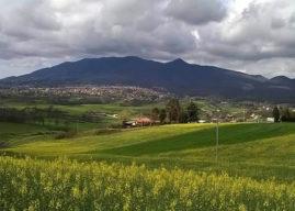 Velletri, famiglia si perde nei boschi del Monte Artemisio