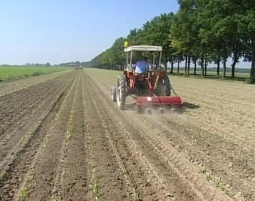 agricoltura22