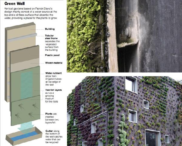 Giardino Verticale Il Verde Alla Portata Di Ogni Spazio