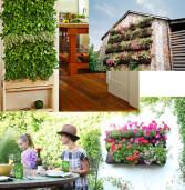 Giardino verticale, il verde alla portata di ogni spazio
