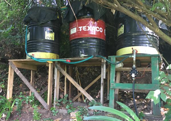 Velletri scoperta piantagione di canapa indiana la for Temporizzatore impianto irrigazione