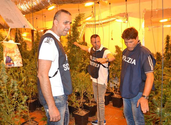Roma, coltivavano droga in una villa a Rocca di Papa, due arresti