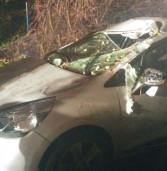 Maltempo, cade un albero su un'auto. Ferita una 30enne