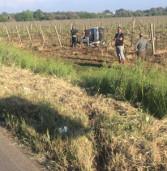 Lanuvio, Fiat Panda vola in un vigneto. A Castelgandolfo, 14enne si frattura gamba dopo tamponamento