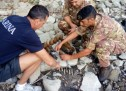Recuperate 70 bombe nel lago di Castelgandolfo