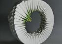 Frascati, torna la III edizione della Biennale d'Arte Ceramica Contemporanea