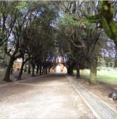 Frascati, riapre il Parco dell'Ombrellino