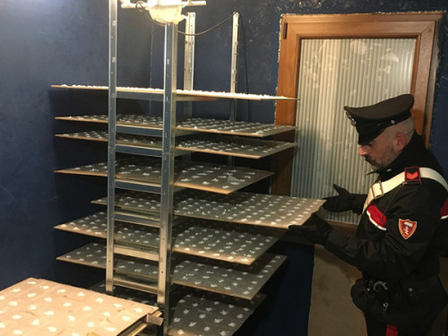 frascati-il-laboratorio-della-droga-scoperto-dai-carabinieri-1